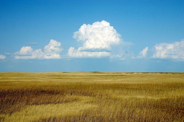 1200px-Cumulus_Clouds_over_Yellow_Prairie2