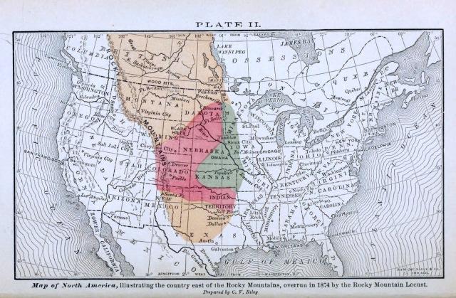 The Locust Plague - Plate II 1874