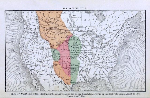 The Locust Plague - Plate III 1876
