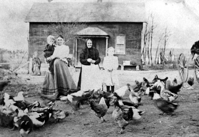 117-4 Josefa Kmoch, Josef Kmoch, Katerina Strudl, and Bertha Figgner