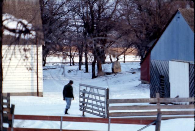 Farm 1 12-24-74